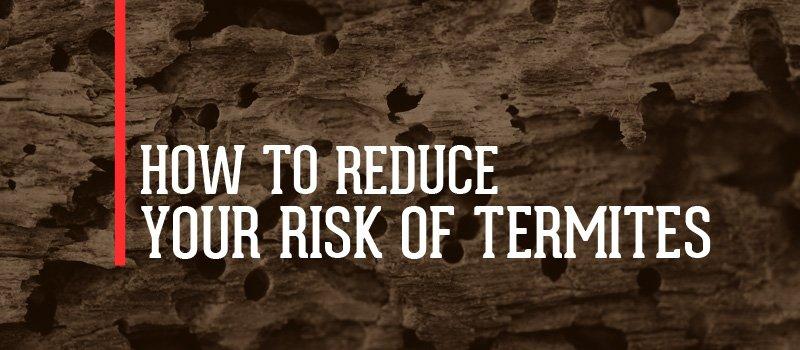reduce risk of termites infestation