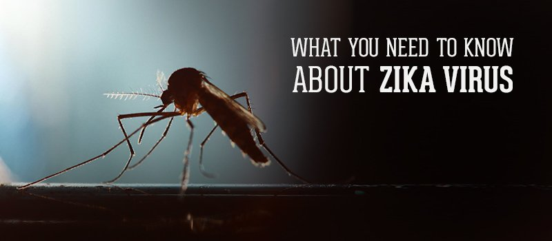 how to prevent zika virus