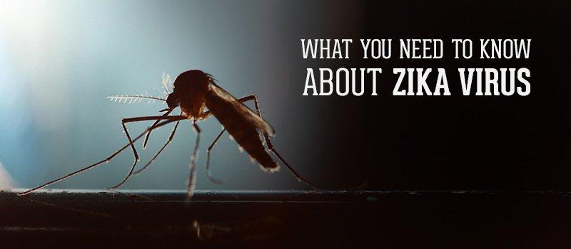 how to prevent zika virus