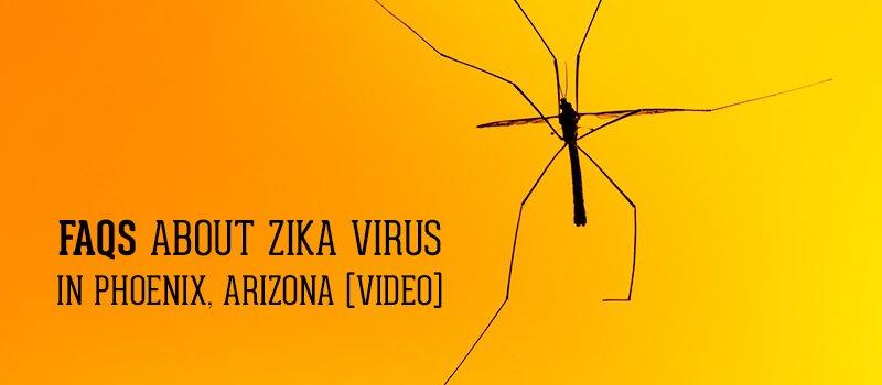 Zika Virus in Phoenix AZ