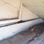 hole under eaves of home